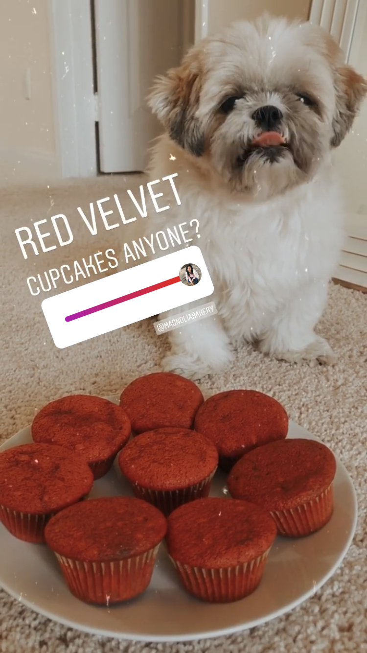 Have you ever tried Magnolia Bakery's Red Velvet Cake before? Now is the perfect time! Los Angeles Blogger My Teacher Got Style is sharing this delicious recipe here!